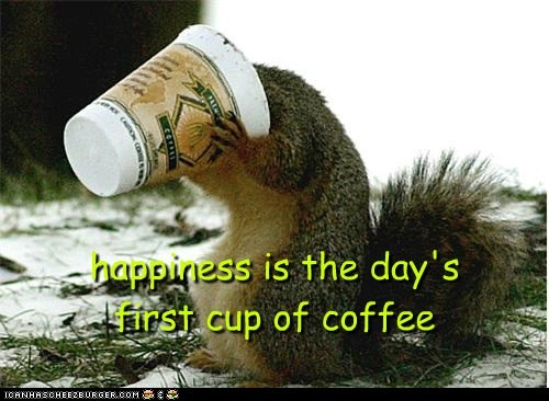squirrels,coffee