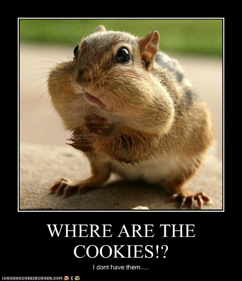 WHERE ARE THE COOKIES!? I dont have them.....