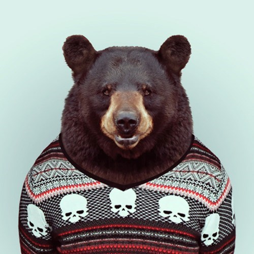 sweaters bears animals in clothes - 7194980352