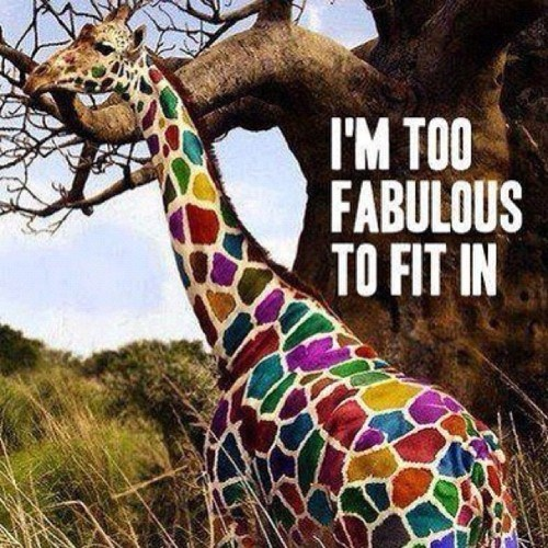rainbows fabulous giraffes - 7196057856