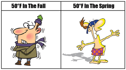 spring,comics,weather,fall