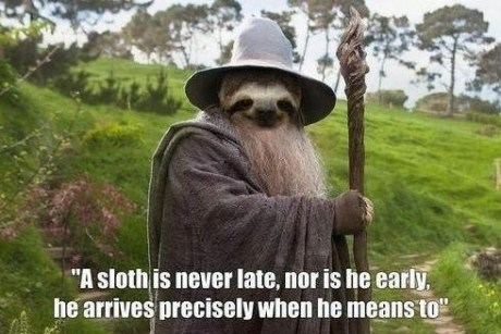 Lord of the Rings gandalf sloths - 7197242368