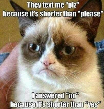Grumpy Cat no yes - 7198564096