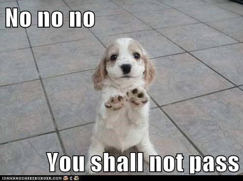 you shall not pass - 7200279552