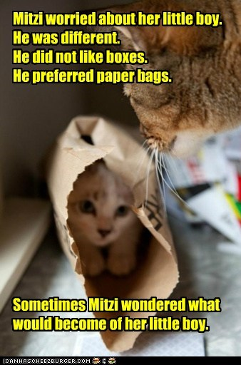Mitzi worried about her little boy. He was different. He did not like boxes. He preferred paper bags. Sometimes Mitzi wondered what would become of her little boy.