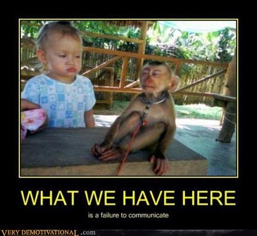 baby,wtf,monkey