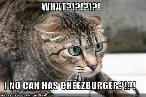 Cheezburger Image 720800000
