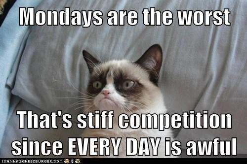 Mondays are the worst That's stiff competition since EVERY DAY is awful