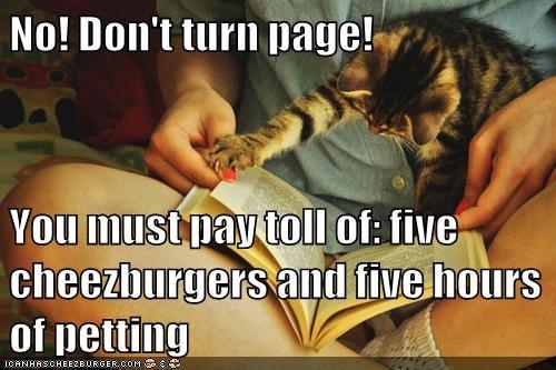 Cheezburger Image 7208164608