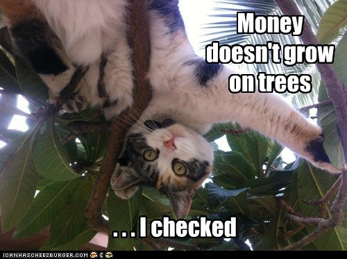 Money doesn't grow on trees . . . I checked