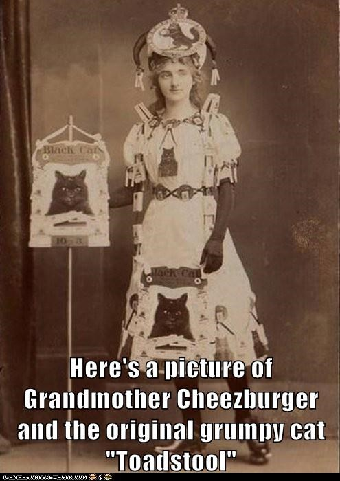 Cheezburger Image 7217420032