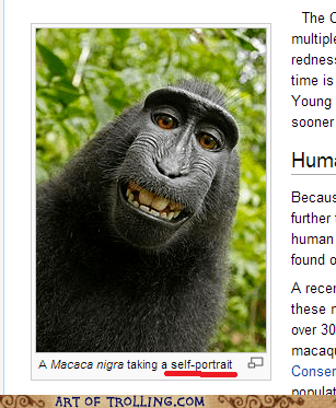 instagram self shot selfie macaque - 7218238208