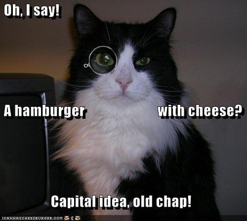 Cheezburger Image 721940736