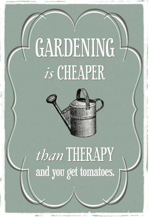 gardening therapy meemawbase - 7220252160