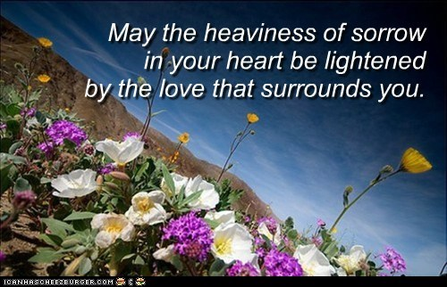 May the heaviness of sorrow in your heart be lightened by the love that surrounds you.