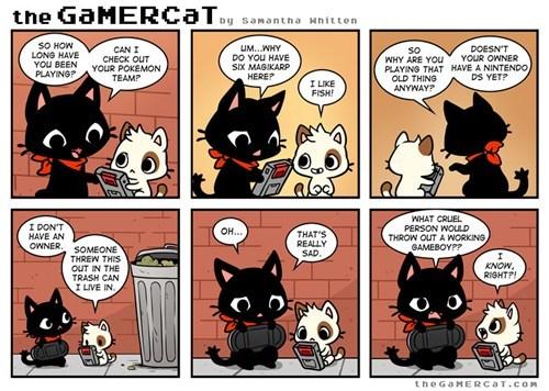 magikarp comics game boys the gamer cat - 7220919808