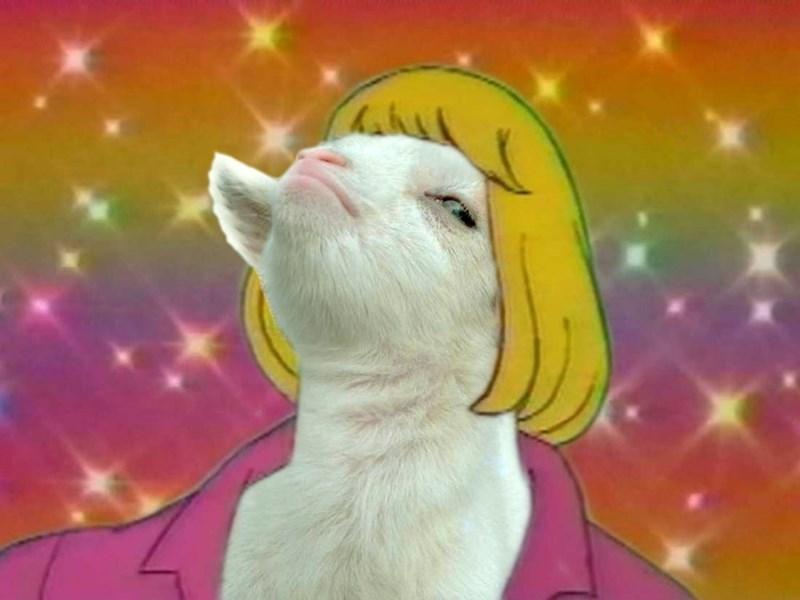 smug goat photoshops