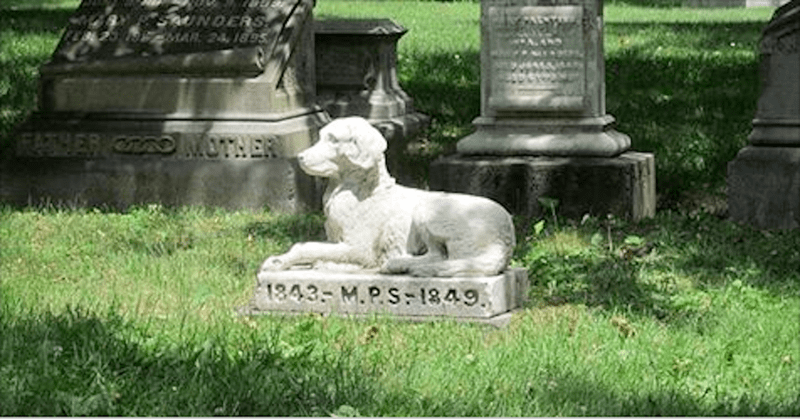 buried pets cemetaries new york law - 7228677