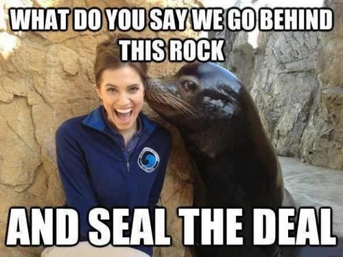 Sexy Ladies rock seal - 7231710720