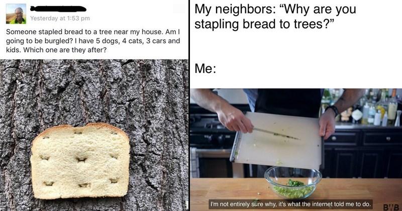 weird stupid memes, dank memes