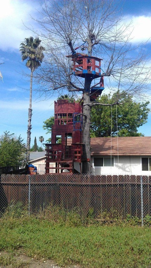 tree house design fort - 7235115008