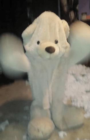 dance list teddy bear twitter spooky - 723717
