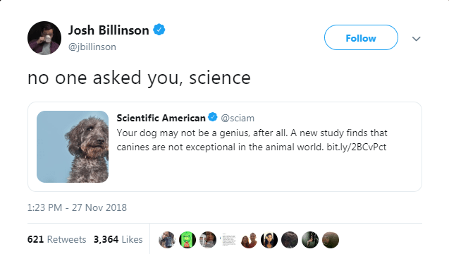 tweet reacting to study about dogs not being smart