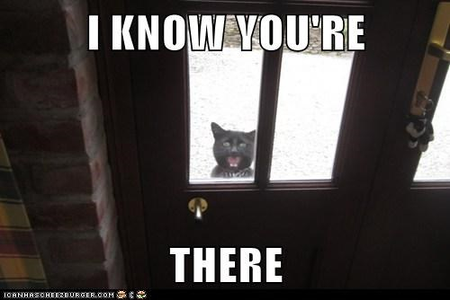 Lolcats - door - Page 2 - LOL at Funny Cat Memes - Funny cat pictures with  words on them - lol | cat memes | funny cats | funny cat pictures