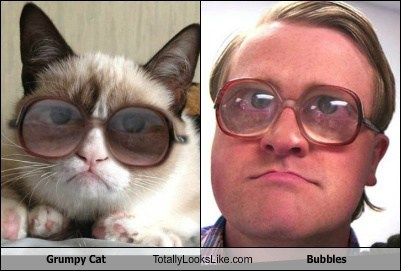 totally looks like grump cat bubbles trailer park boys