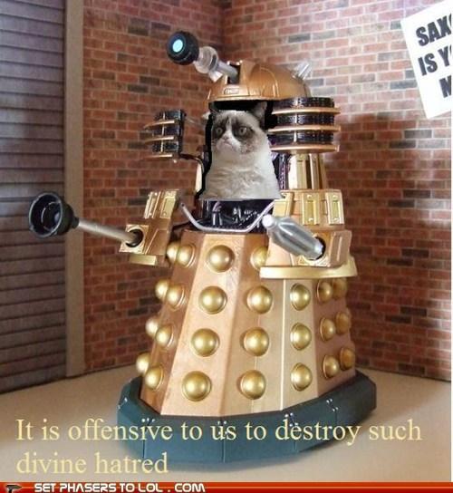 Grumpy Cat,daleks,doctor who