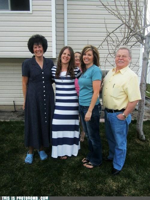 family ruined - 7241652480