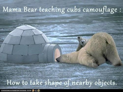 Mama Bear teaching cubs camouflage : How to take shape of nearby objects.