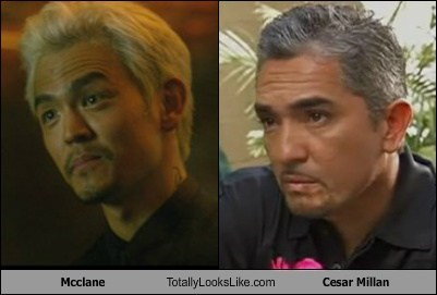 Mcclane Totally Looks Like Cesar Millan