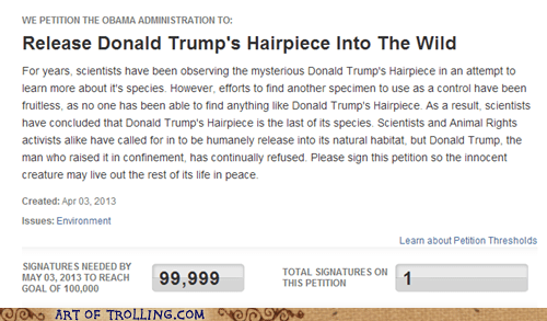 hairpiece toupee donald trump - 7243910144