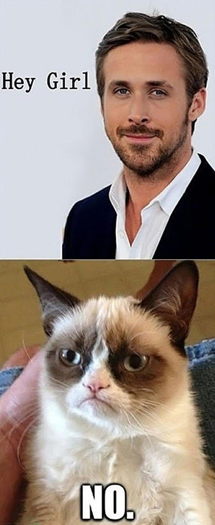hey girl Grumpy Cat Ryan Gosling - 7245178112