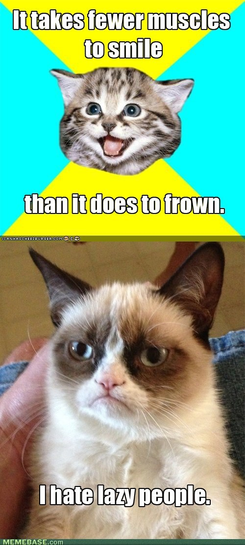 frowns Grumpy Cat smiles
