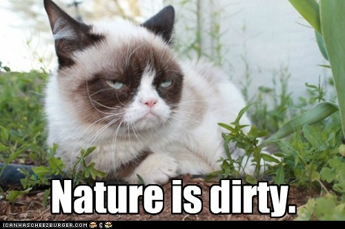 nature,Grumpy Cat,dirt