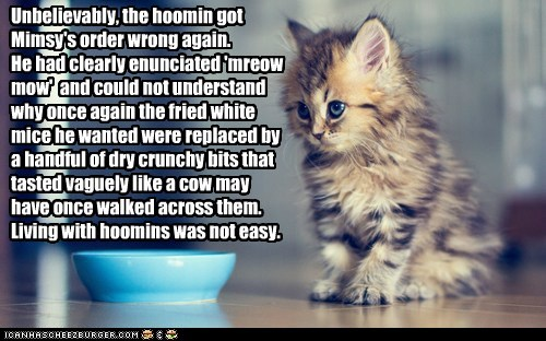 Unbelievably, the hoomin got Mimsy's order wrong again. He had clearly enunciated 'mreow mow' and could not understand why once again the fried white mice he wanted were replaced by a handful of dry crunchy bits that tasted vaguely like a cow may have once walked across them. Living with hoomins was not easy.
