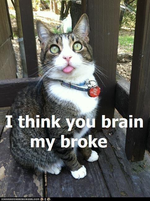 broke brain derp - 7246222080