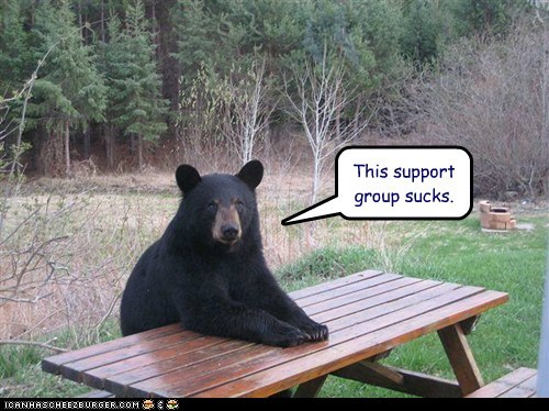bear,support group