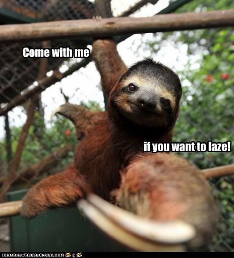 lazy,Arnold Scwarzenegger,sloth,terminator