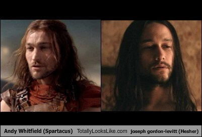 hair totally looks like Andy Whitfield Joseph Gordon-Levitt