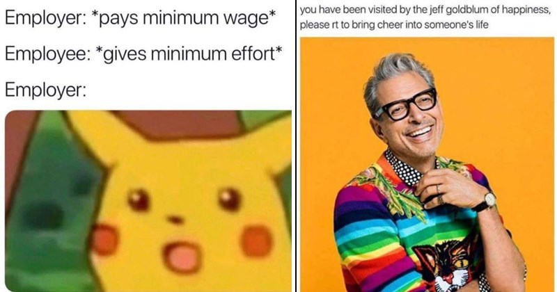 cover image of surprised pikachu, Jeff goldblum radiating happiness