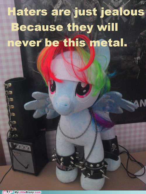 IRL,haters,metal,plushies,rainbow dash,thrash