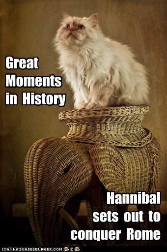 elephant,history,hannibal