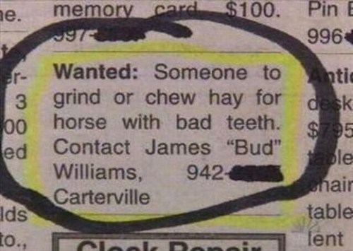 hay,work,chew
