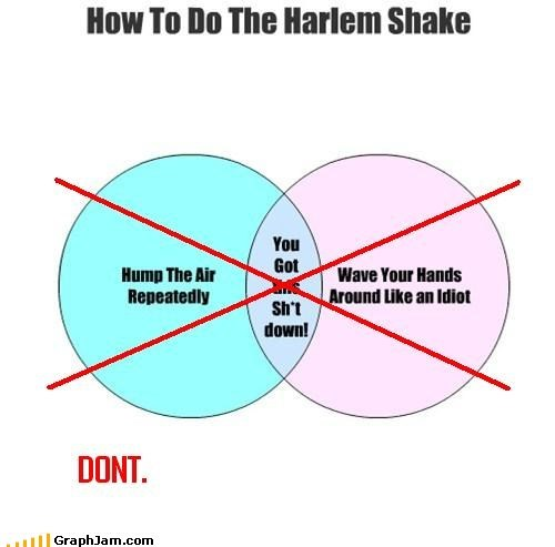 dont-do-it horrible harlem shake - 7256780544