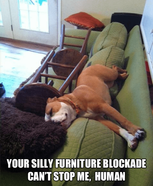 furniture nap - 7257648128
