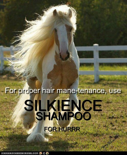 SILKIENCE SHAMPOO FOR HURRR FOR HURRR SHAMPOO SILKIENCE For proper hair mane-tenance, use