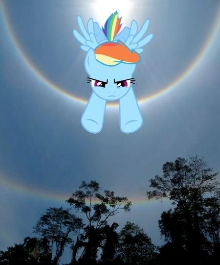IRL double rainboom rainbow dash - 7258639104
